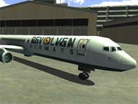 Park it Jumbo Jet License