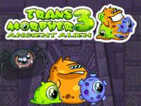 transmorpher-3